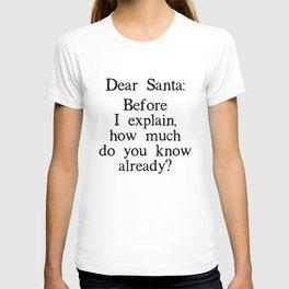 Funny Dear Santa Letter Christmas Gift T-shirt