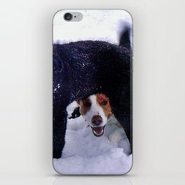 Happy Dogs in Snow iPhone Skin