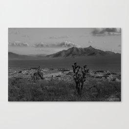 Joshua Tree Death Valley Canvas Print