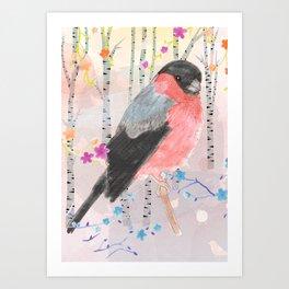 Bullfinch in the birch tree forest Art Print