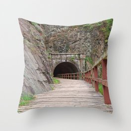 Paw Paw Tunnel Throw Pillow