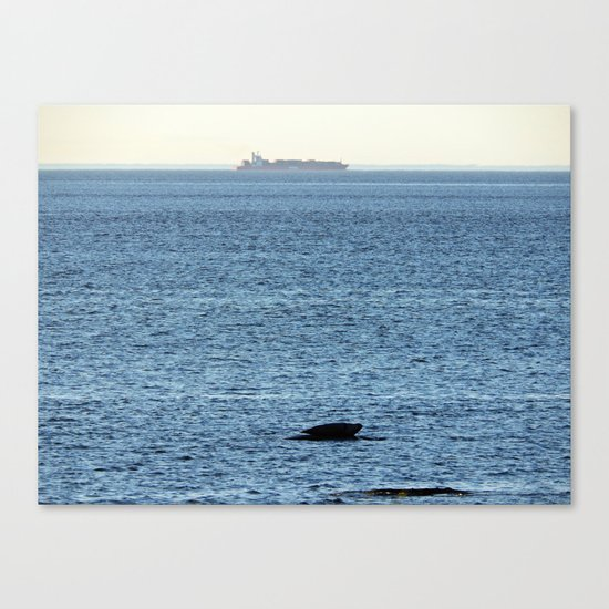 Seal and Ship Canvas Print