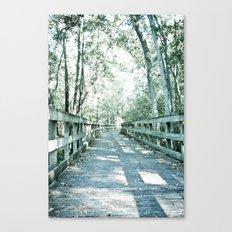 wilderness pathway Canvas Print
