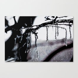 Concept frozen : Ice on branches Canvas Print