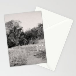 Summer in the Everglades Stationery Cards