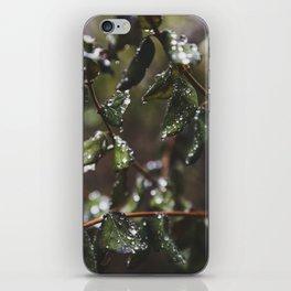 Mountain Dew iPhone Skin