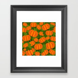 C13D Pumpkin Harvest Framed Art Print