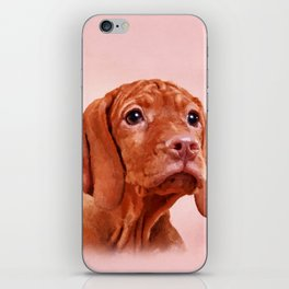 Vizsla puppy- Hungarian pointer iPhone Skin