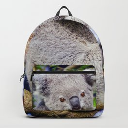 Australian Koala Bear Backpack