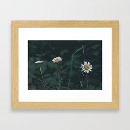 Onward & Upward Framed Art Print