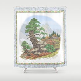OLD HEMLOCK CABIN ON PTARMIGAN RIDGE Shower Curtain