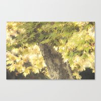 stay gold Canvas Prints featuring Stay Gold by Honey Malek