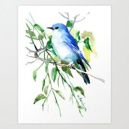 Mountain Bluebird, sky blue green bird artwork Art Print