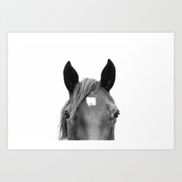 Peeking Horse Art Print
