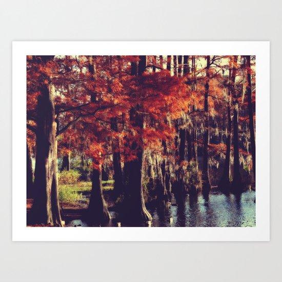 Autumn Cypress Art Print