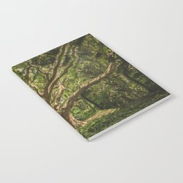Spirits inside the wood Notebook