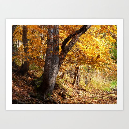 Fall afternoon IV Art Print