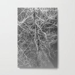 CONNECT Metal Print