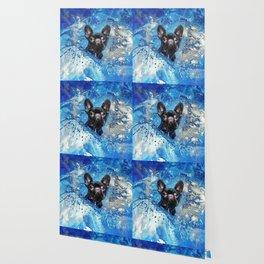 French Bulldog -Frenchie Dog Wallpaper