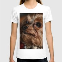 yorkie T-shirts featuring Eyes on Momma by IowaShots