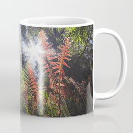 Ferns in Bunyip State Forest, Victoria - Australia Coffee Mug
