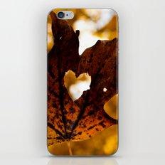 Love in fall iPhone & iPod Skin