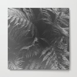Colorless Fern Metal Print
