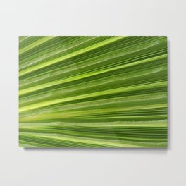 Plant Green Ridges Metal Print