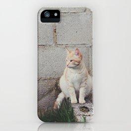 Tou ♥ iPhone Case