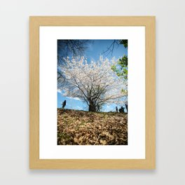 Time to Grow and Bloom Framed Art Print