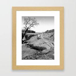The Leaning Oak Framed Art Print