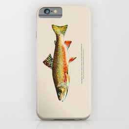 Brook Trout iPhone Case