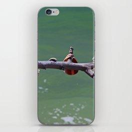 Beachtime on Boca iPhone Skin