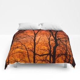 Leafless Trees At October Sunrise #decor #buyart #society6 Comforters