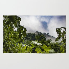 View through the Mist of the Cloud Forest in the Chocoyero-El Brujo Nature Reserve, Nicaragua Rug
