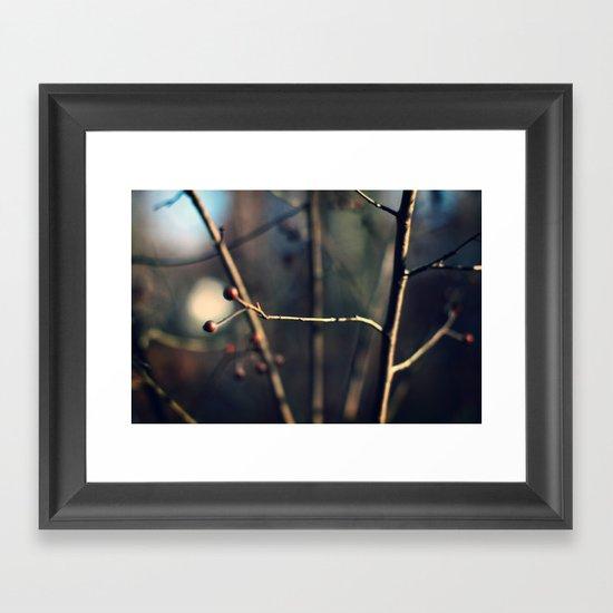 Winter Waits Framed Art Print