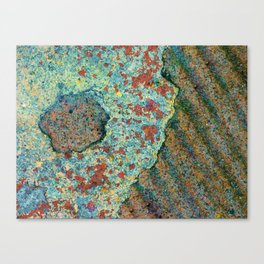 Eye to See Canvas Print