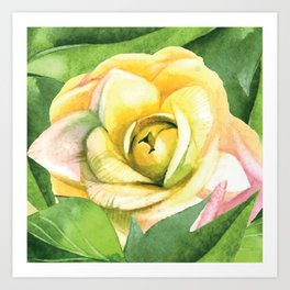 Watercolor flower on canvas - pastel Art Print