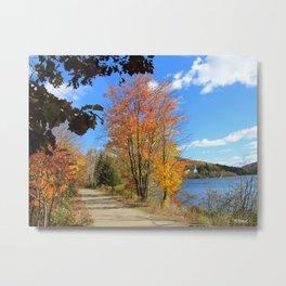 Autumn 2 Metal Print