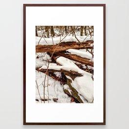 Snow Covered Framed Art Print