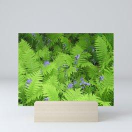 Bluebells and Ferns Mini Art Print