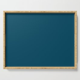 Encouraging Dark Blue Solid Color Pairs To Sherwin Williams Loyal Blue SW 6510 Serving Tray