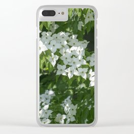 Longwood Gardens - Spring Series 244 Clear iPhone Case