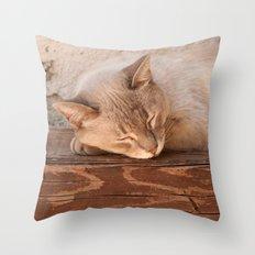 Alka Throw Pillow