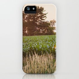 Sunsets and Corn Fields iPhone Case