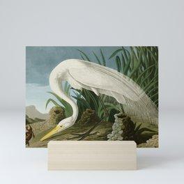 White Heron - John James Audubon's Birds of America Print Mini Art Print