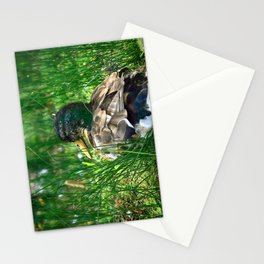 Into the Wilderness - Colorful Stationery Cards