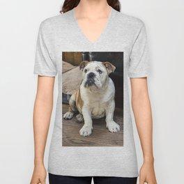 British bulldog puppy Unisex V-Neck