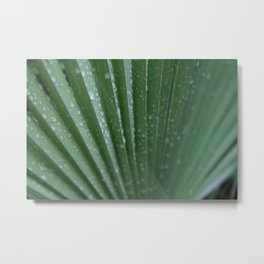 Green Palm Frond DPG160217-15 Metal Print