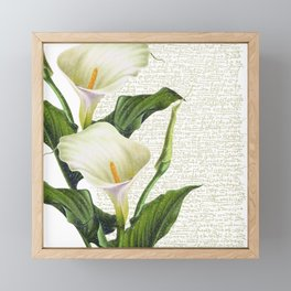 Beautiful Calla Lily #society6 #buyart #decor #lifestyle Framed Mini Art Print